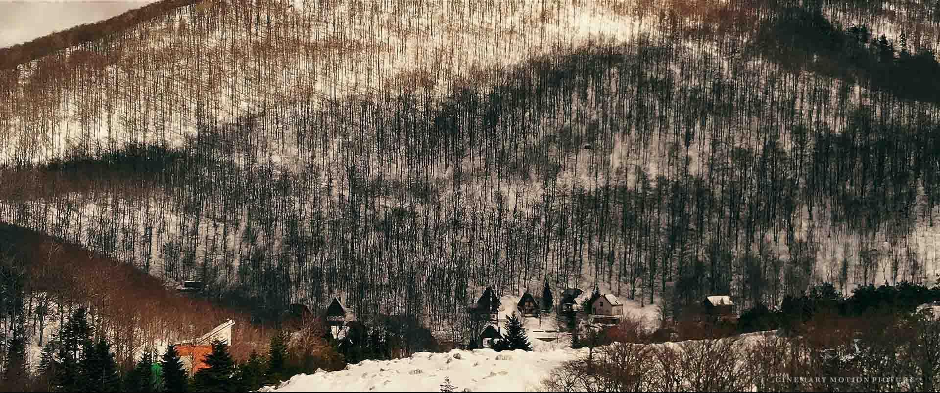Landscape_25